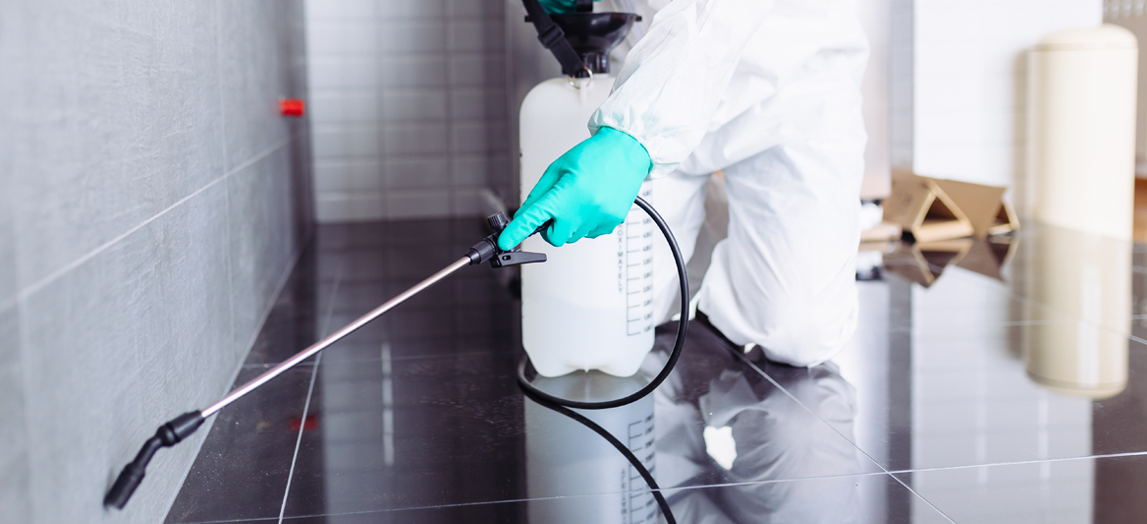 Determine The Reasons To Hire Pest Control Company Smartly