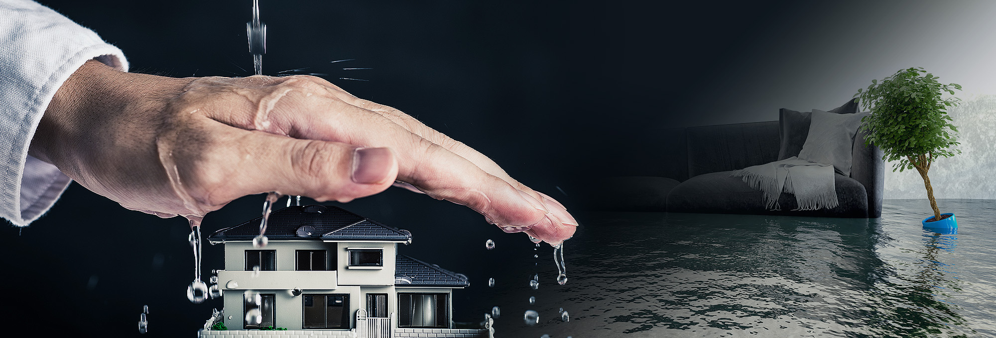 Why Is It Important To Seek The Help In Water Damage Condition?